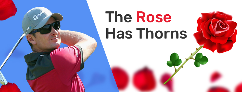 The Rose Has Thorns